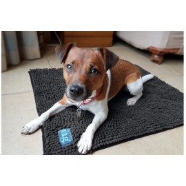 Henry Wag tapis séchante chien
